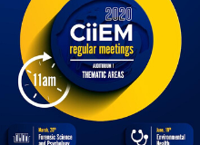 CiiEM Thematic Areas Seminars 2020