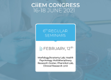 6th Regular Seminars – CiiEM